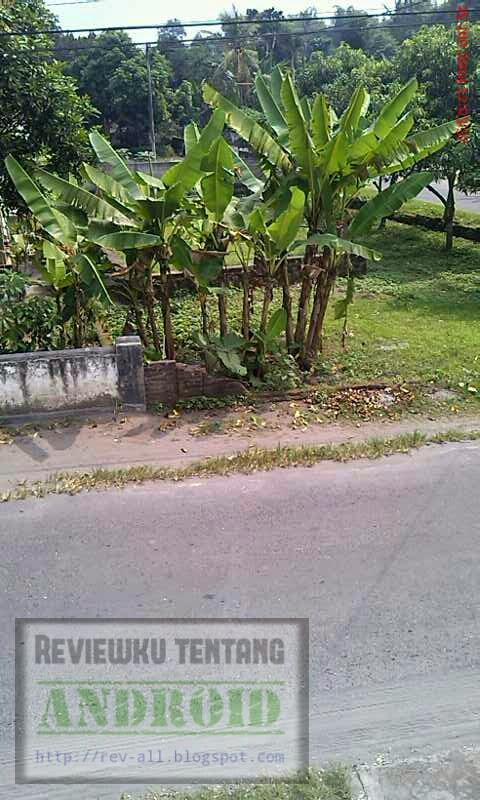 Contoh jepretan foto menggunakan aplikasi Motion Detector (rev-all.blogspot.com)