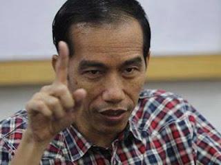 Profil Lengkap Jokowi