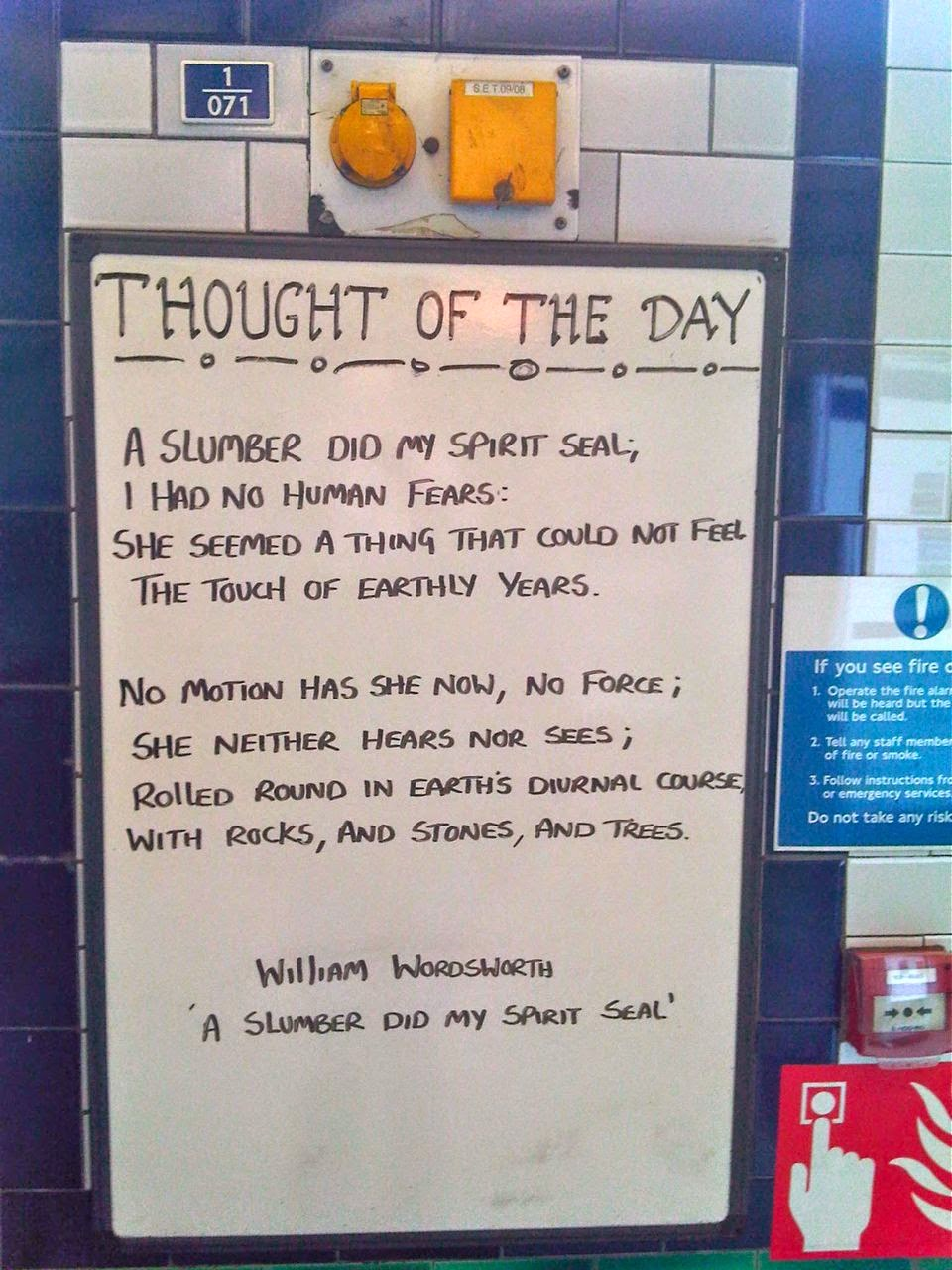 Poetry guaranteed to lift the spirits even after the grimmest Northern Line commute -  thanks to the cultured staff of Clapham North tube station