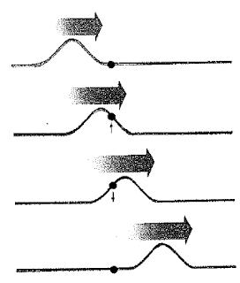 Unidimensionales, como las vibraciones de una cuerda y la luz en una fibra óptica