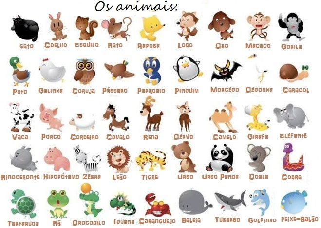 Nombres Populares Portugues Y on Spanish Word For Pets