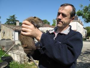 Eric Bruneteau, un piégeur de ragondins devenu éleveur
