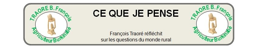 TRAORE B. Franois : ce que je pense