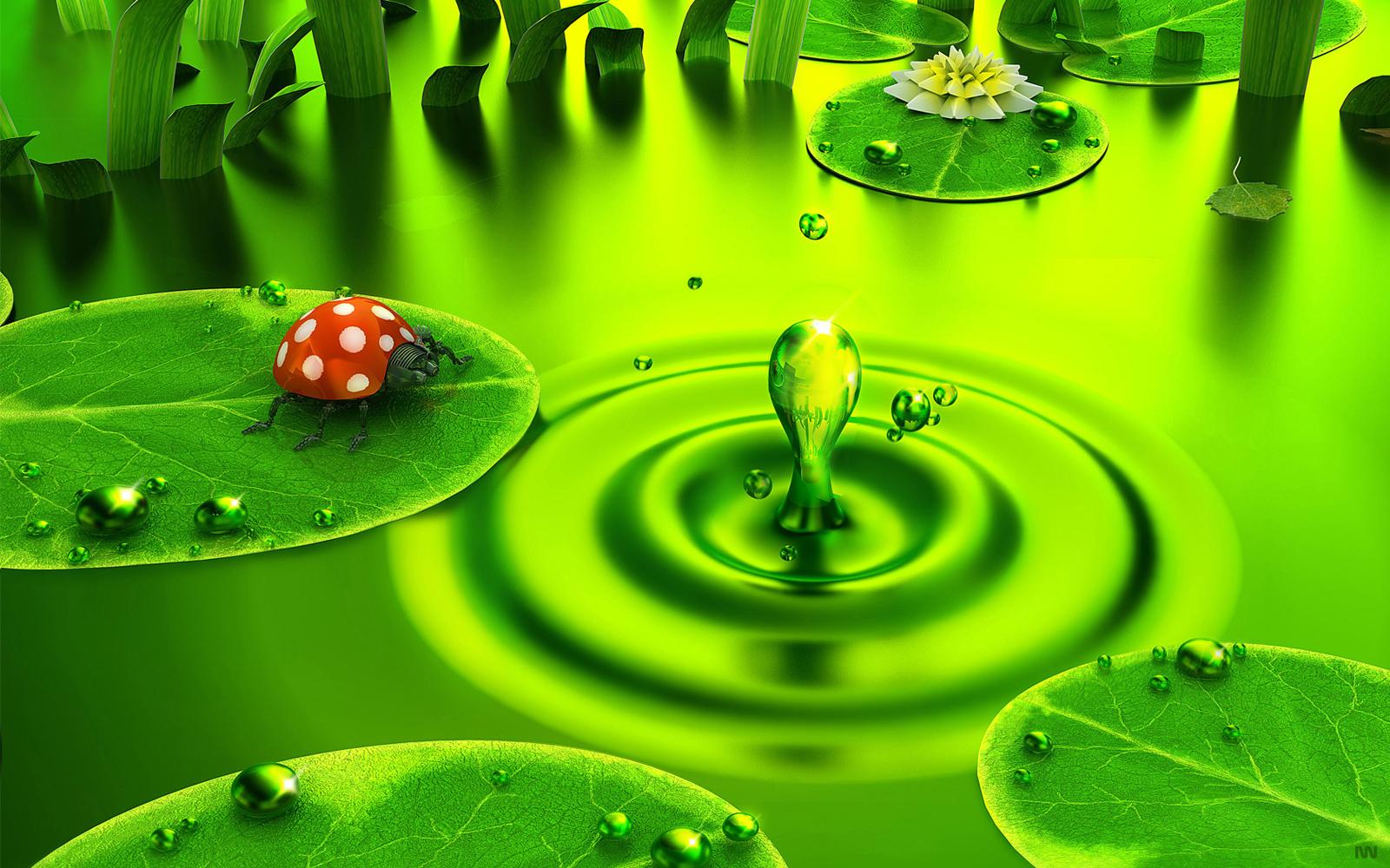 Groene Achtergronden | HD Wallpapers