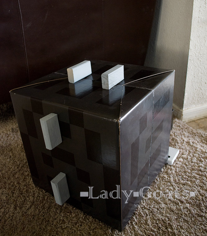 Lady goats how to make an enderdragon costume friday october 25 2013 solutioingenieria Choice Image