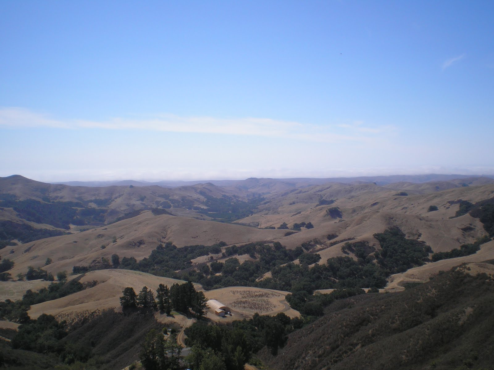 The Road Genealogist Monterey To Cambria To Paso Robles Ca