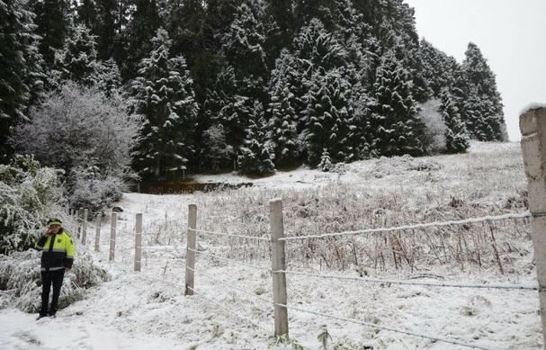 Clima frío