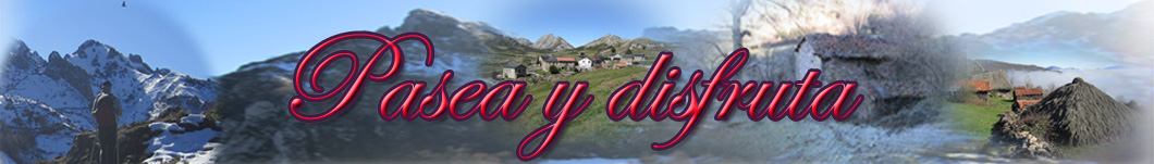 Mis paseos por Asturias