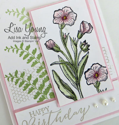 Stampin' Up! Butterfly Basics stamp set. Pink Pirouette flowers with ferns and birthday sentiment on white background. Handmade birthday card by Lisa Young. From the Stamp Review Crew blog hop featuring the Butterfly Basics stamp set. The link to the blog hop is on the blog, Add Ink and Stamp