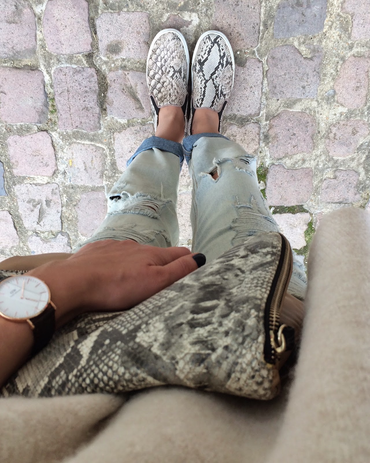 daniel wellington watch york lady, snake print clutch, snake print trainers