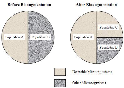 Bioaugmentation Chart