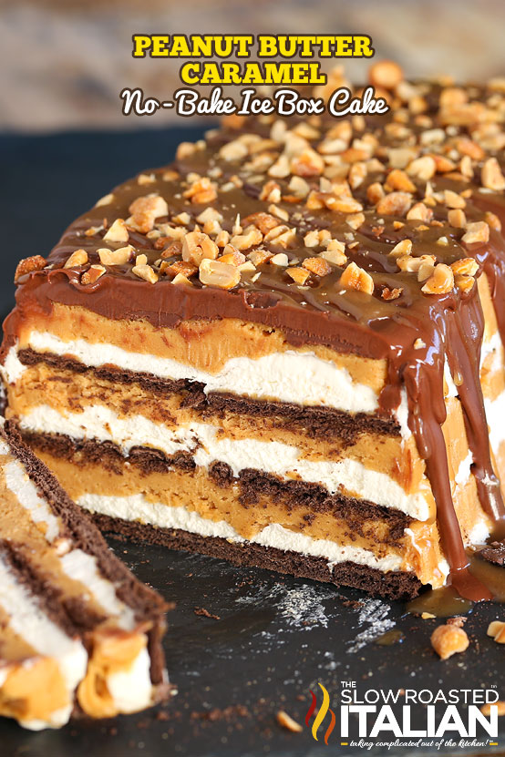 Chocolate And Caramel Layer Ice Cream Cake Recipe