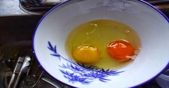 ini cara mengetahui telur yang sehat kaskus