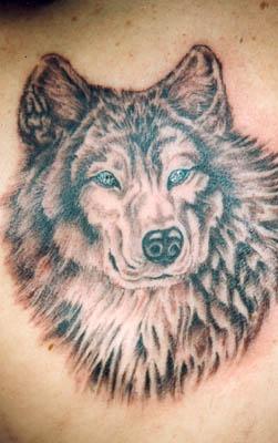 Wolf Tattoo 21364673jpg