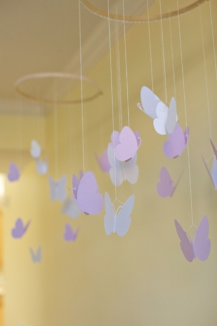 Idea, butterfly, themed, party,