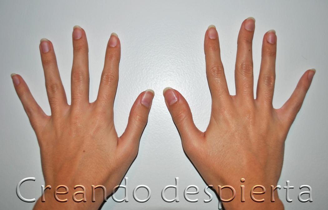 Las manos de 'Creando despierta'