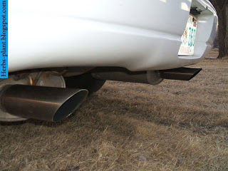 chevrolet Lumina car 2013 exhaust - صور شكمان سيارة شيفروليه لومينا 2013