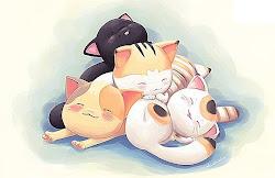 想要像这群小猫般慵懒和轻松地过生活?