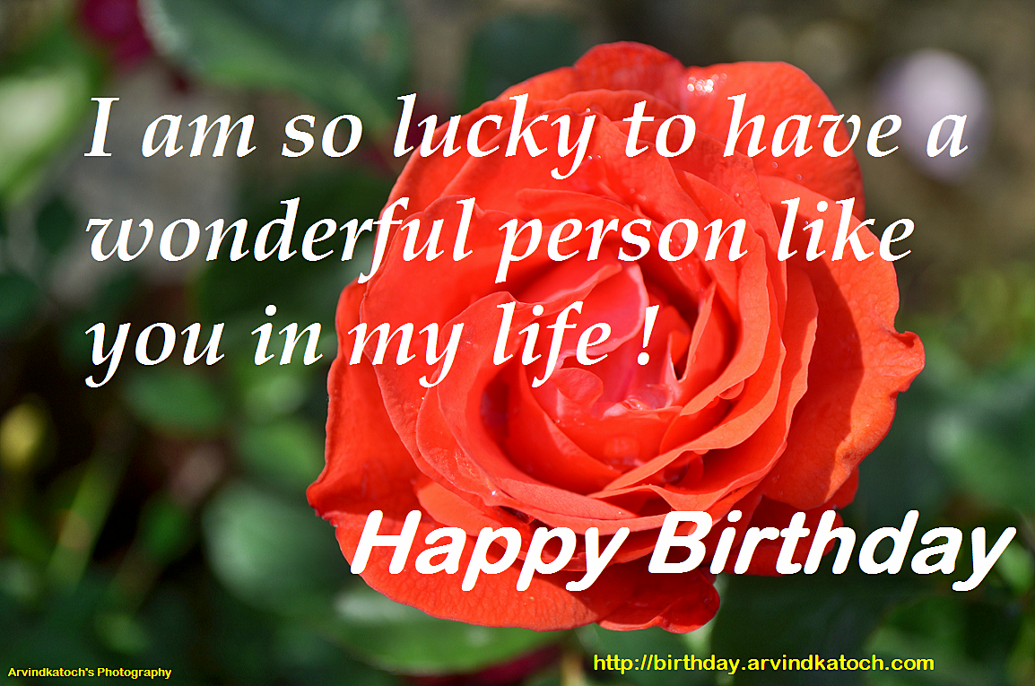 the most wonderful day of my life Birthday wishes - beautiful  wishing you a wonderful day and an amazing life  be someone with whom i would share my entire life on your special day i want to.