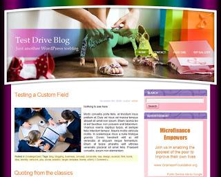 Women Shoes WP1 Wordpress Theme