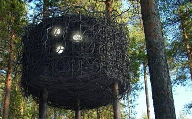 rumah pohon sarang burung