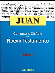 Comentario Bíblico Disfrute: Juan Tomo #1