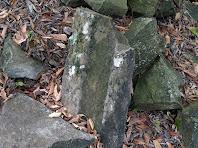 Restes de pedres treballades de Sabruneta