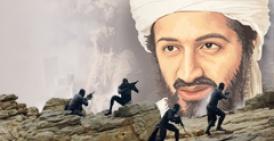 Osama's Death Facts
