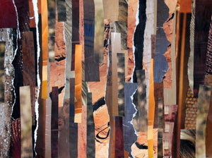 Bark by collage artist Megan Coyle