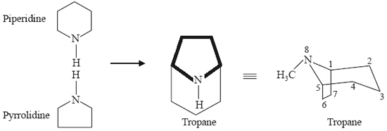 118-Pyrrolidine.jpg