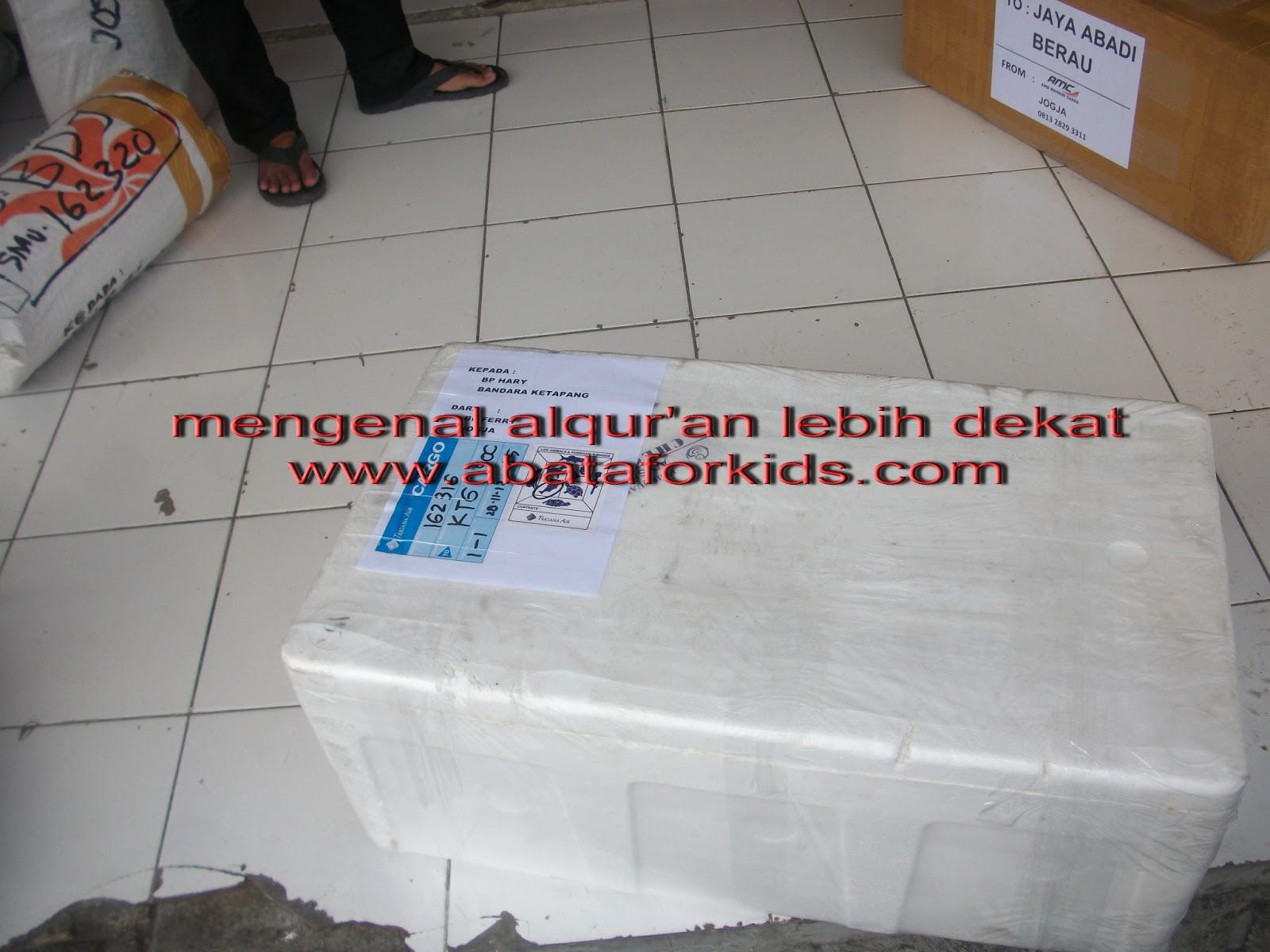 Bibit Nila Dan Larva Nila Murah Di Jakarta