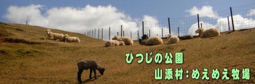 ひつじの公園~山添村:めえめえ牧場