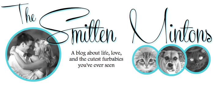 The Smitten Mintons
