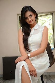 Actress Nikitha Narayan Picture Gallery in White Dress at Ladies and Gentleman Movie Press Meet  35
