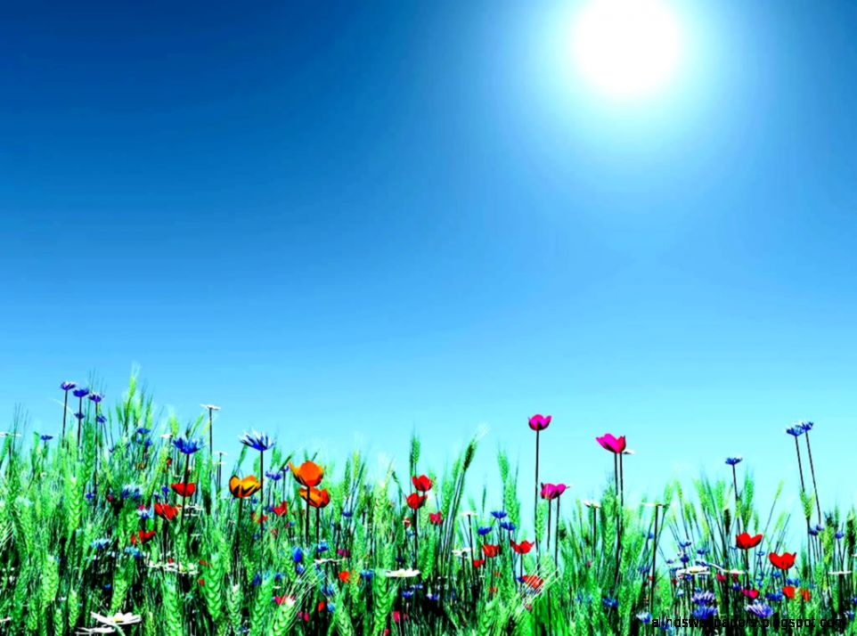 Free Desktop Backgrounds For Spring Beautiful by Free download