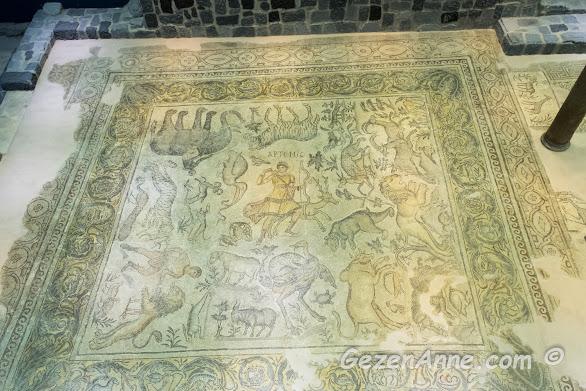 Hatay Arkeoloji Müzesi'ndeki mozaikler