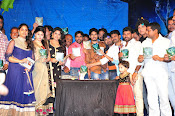 Sahasam Cheyyara Dimbaka audio launch photos-thumbnail-10