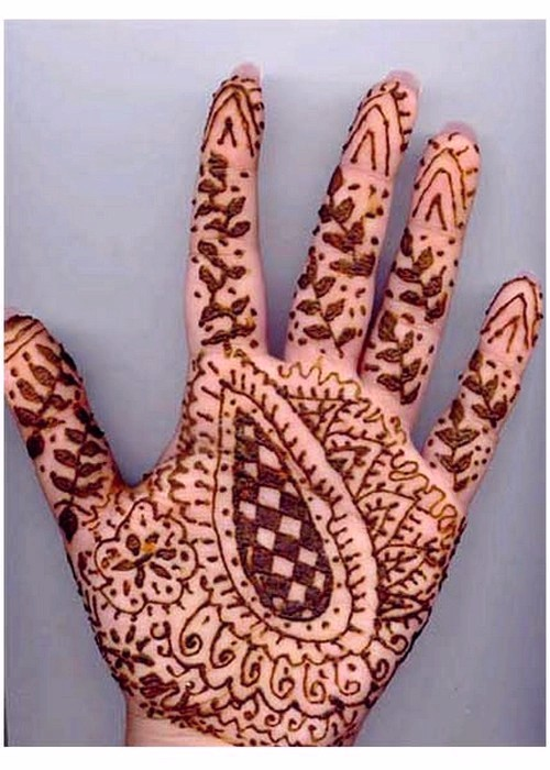 Mehndi Traditional Designs : Traditional mehndi design designs