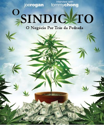 o sindicato