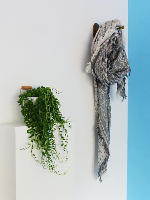 Pflanze Hängepflanze XXL-Schal