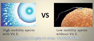 vitamin e shaklee untuk lelaki