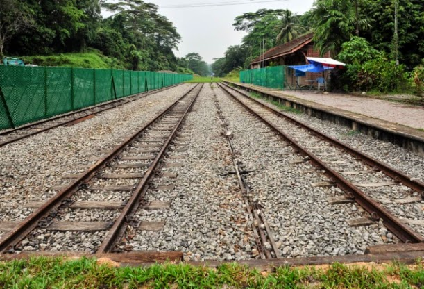 The tracks have been removed and grass planted on the former rail corridor