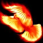 Deja que Él Espiritu Santo te guie.