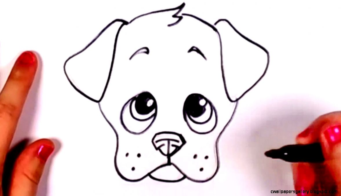 How to Draw a Cute Puppy Face Step by Step CC   YouTube