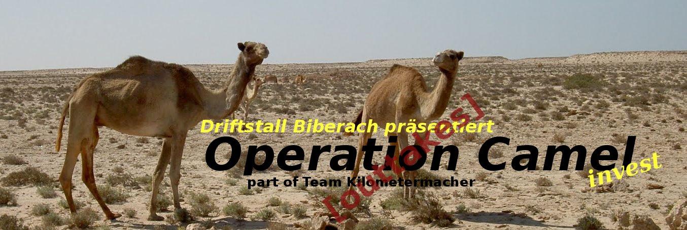 Operation- Camel Invest - Driftstall Biberach  auf der Allgäu Orient 2012