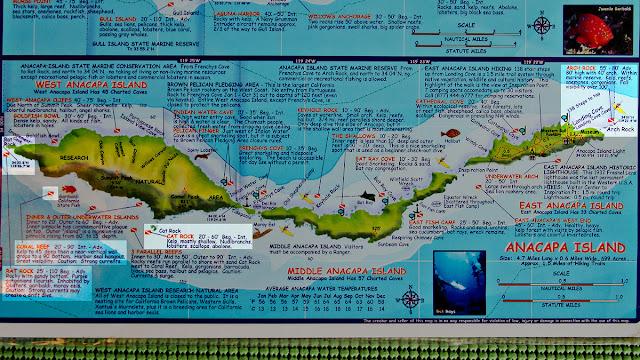Anacapa Island, Channel Islands