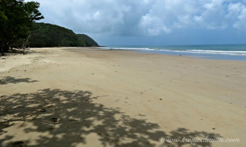 Cow Bay Beach