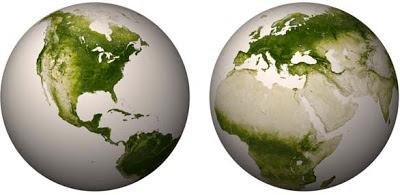 Mapa interactivo de la vegetación del planeta