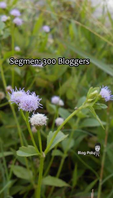 http://www.paly.my/2013/03/segmen-300-bloggers_27.html