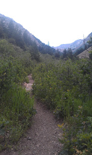 Lake Blanche Trail, Brighton Utah